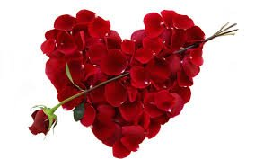 heart made of roses with arrow
